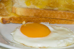 Fried egg with toast Royalty Free Stock Photo