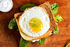 Fried egg on a toast stock images