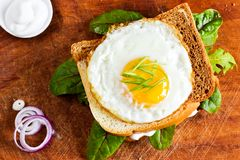 Fried egg on a toast with leaves royalty free stock photos