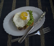 Fried egg with toast. Fried egg with toast and salad Royalty Free Stock Photography