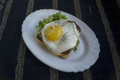 Fried egg with toast. Fried egg with toast and salad Royalty Free Stock Images