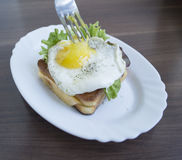 Fried egg with toast. Fried egg with toast and salad Stock Images