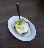 Fried egg with toast. Fried egg with toast and salad Royalty Free Stock Photo