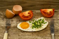 Fried egg topped with onions and tomatoes Royalty Free Stock Photos