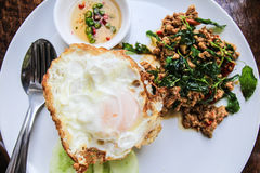 Fried egg topped with stir-fried pork and basil. Stock Photos