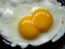 Two egg yolk Royalty Free Stock Image