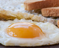 Fried egg and white toast Royalty Free Stock Photography
