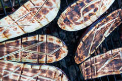 Fried eggplant on the grill. Delicious roasted eggplant on the grill Royalty Free Stock Image