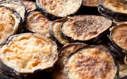 Fried eggplant rings stock images