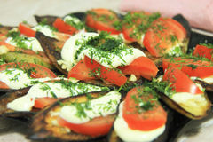 Fried eggplants and fresh tomato with souce and herbs Stock Images