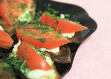 Fried eggplants and fresh tomato with souce and herbs Royalty Free Stock Photo