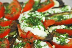 Fried eggplants and fresh tomato with souce and herbs. AFried eggplants and fresh tomato with souce and herbs on the plate ready for eating royalty free stock photo