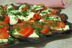 Fried eggplants and fresh tomato with souce and herbs. Grilled eggplants and fresh tomato with souce and herbs on the black plate ready for eating stock photos