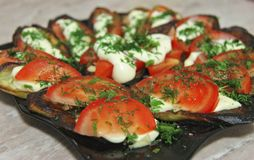 Fried eggplants and fresh tomato with souce and herbs. Grilled eggplants and fresh tomato with souce and herbs on the plate ready for eating stock photos
