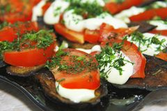 Fried eggplants and fresh tomato with souce and herbs. Tasty roasting eggplants and fresh tomato with souce and herbs on the plate ready for eating stock image
