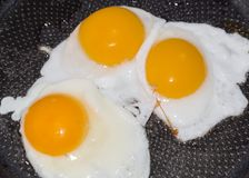 Fried Eggs Stockfotos