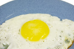 Fried eggs. On a blue plate. On a white background Stock Photos
