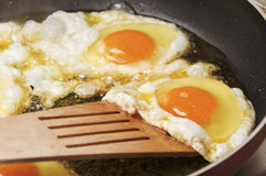Fried eggs. Close up view of the fried eggs on a frying pan Royalty Free Stock Photos