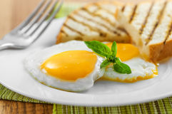 Fried Eggs Stock Foto