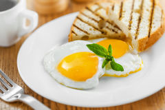 Fried Eggs Lizenzfreie Stockfotos