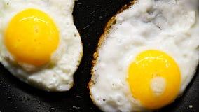 Fried Eggs Image libre de droits