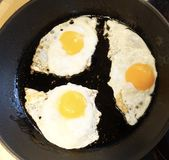 Fried Eggs image stock