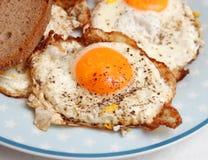 Fried Eggs Lizenzfreie Stockfotografie