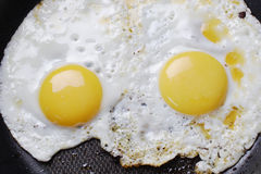 Fried eggs. Stock Photos