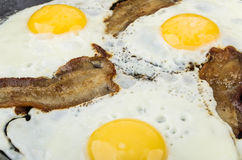 Fried eggs and bacon in pan Stock Photography