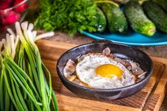 Fried eggs with bacon in a pan stock photo