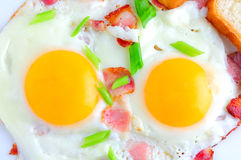 Fried eggs with bacon. On white royalty free stock photo