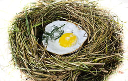 The fried eggs in a bird's nest Stock Photos