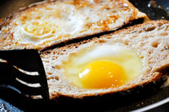 Fried eggs Stock Images