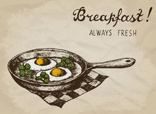 Fried eggs with broccoli on the pan. Hand drawn vector illustration. Stock Image