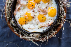 Fried eggs on a cast-iron frying pan. Scrambled eggs from quail eggs on a serving table. Close-up.  Stock Photos
