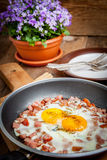 Fried eggs with chopped sausage. Stock Image