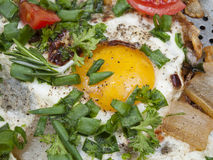 Fried eggs with a crude yolk Royalty Free Stock Images