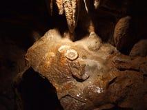 Fried Eggs, formación de roca en Luray Caverns Virginia Foto de archivo libre de regalías