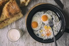 Fried Eggs fresco su olio immagine stock