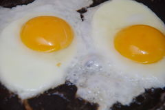 Fried eggs in a frying pan Royalty Free Stock Photography