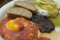 Fried eggs and hot salsa Royalty Free Stock Photo