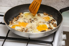 Fried eggs with mushrooms for a breakfast Stock Photos