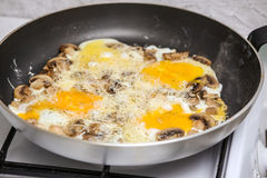 Fried eggs with mushrooms for a breakfast Royalty Free Stock Image