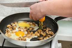 Fried eggs with mushrooms for a breakfast Stock Image
