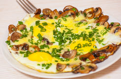Fried eggs with mushrooms, cheese and green onions Royalty Free Stock Photography