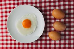 Fried eggs overhead on plate on breakfast tablecloth Royalty Free Stock Photo