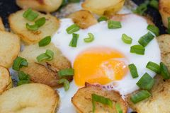 Fried eggs and potatoes with chive. Fried eggs and potatoes with chopped chive stock image