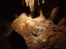 Fried Eggs, rotsvorming in Luray Caverns Virginia Royalty-vrije Stock Foto