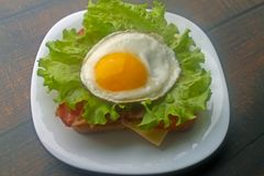 Fried eggs sandwich with bacon and cheese royalty free stock image