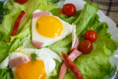 Fried eggs with sausage and tomato Stock Photography
